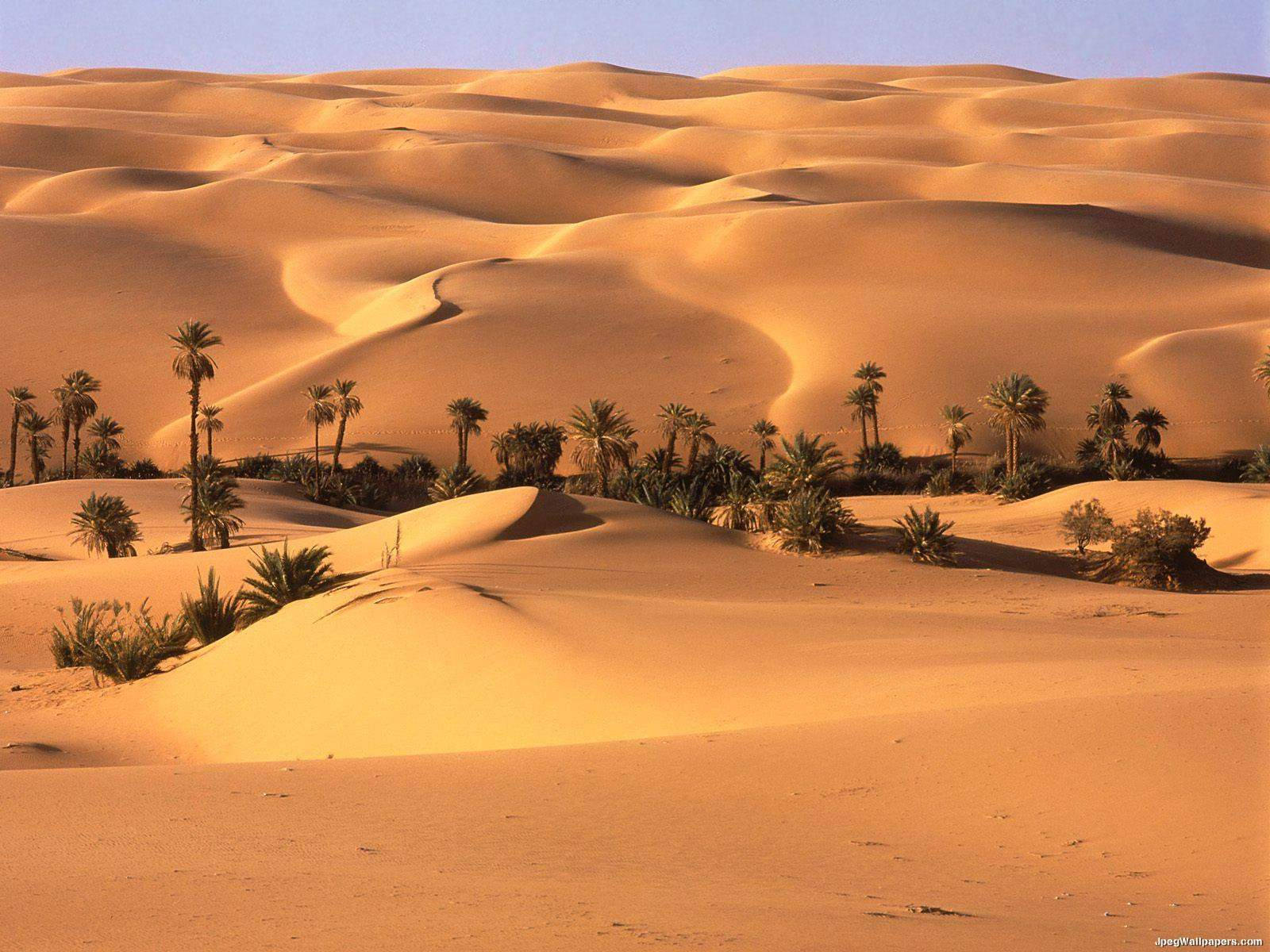 http://www.jpegwallpapers.com/images/wallpapers/Desert-Oasis-Libya-125507.jpeg