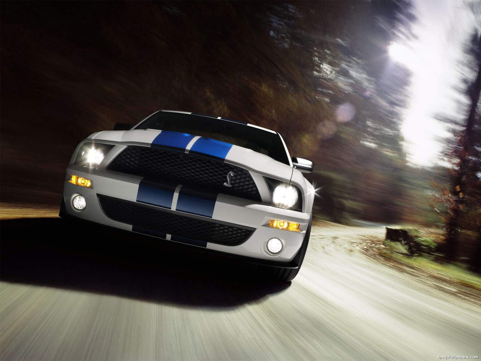 Shelby Ford Mustang GT500