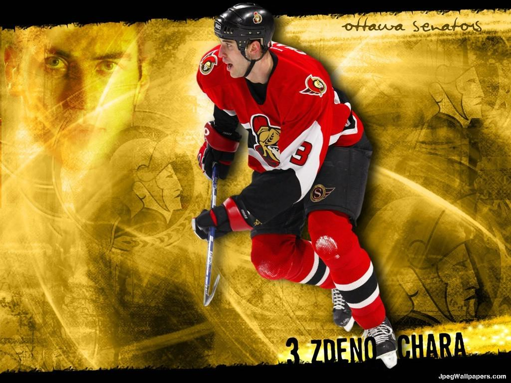 Zdeno Chara wallpaper